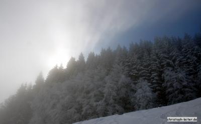 winter_13_06